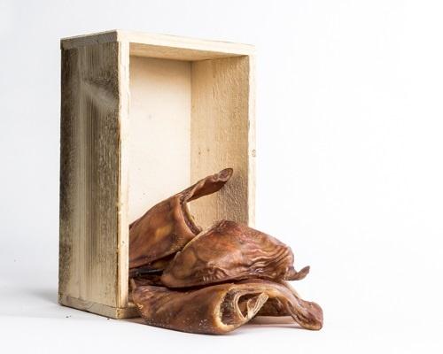 Possunkorvat