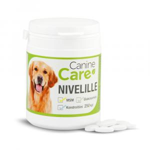 CanineCare Nivelille